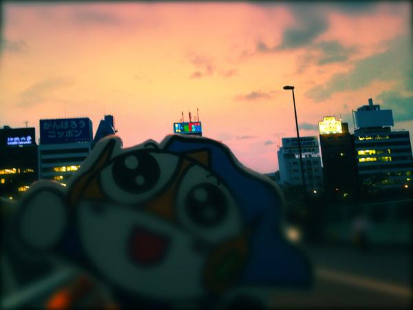 【今日の川柳】夕日を見て一句!