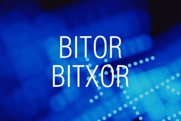 BITOR関数/BITXOR関数でビットごとの論理和や排他的論理和を求める