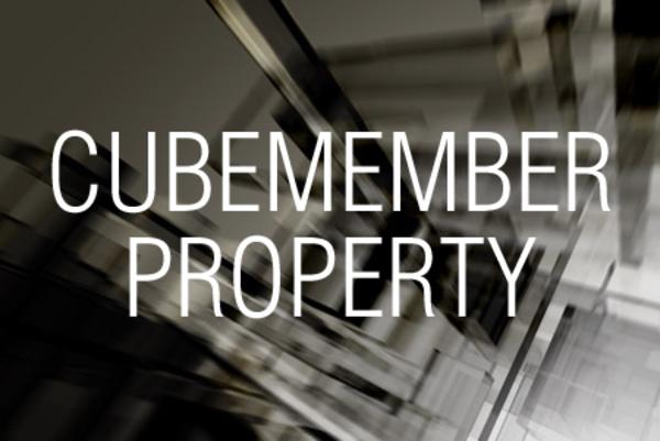 CUBEMEMBERPROPERTY関数でキューブ内のメンバーのプロパティを求める