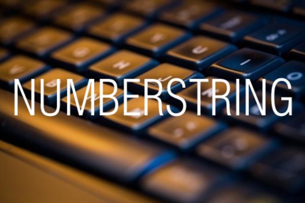 NUMBERSTRING関数で数値を漢数字の文字列に変換する