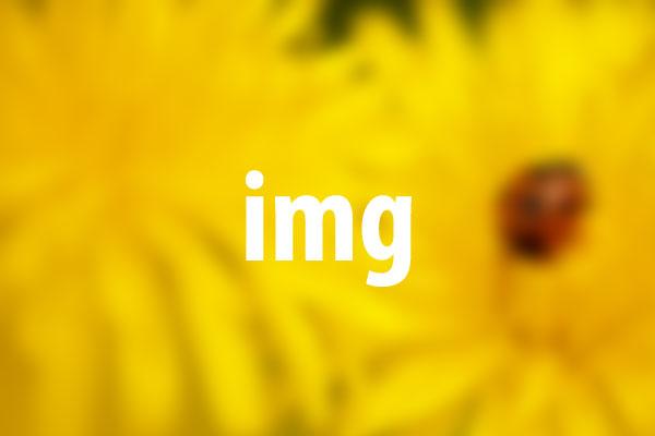 imgタグの意味と使い方