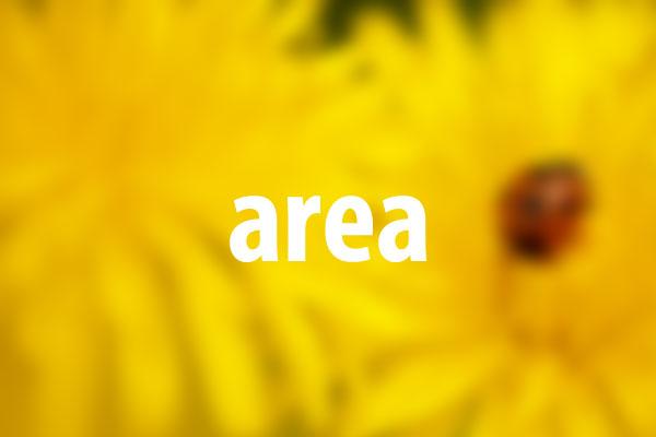 areaタグの意味と使い方
