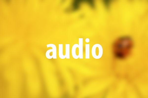 audioタグの意味と使い方