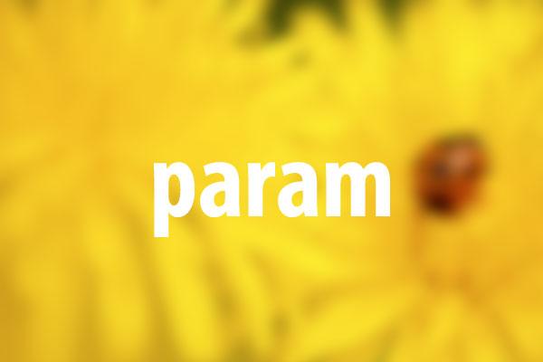 paramタグの意味と使い方