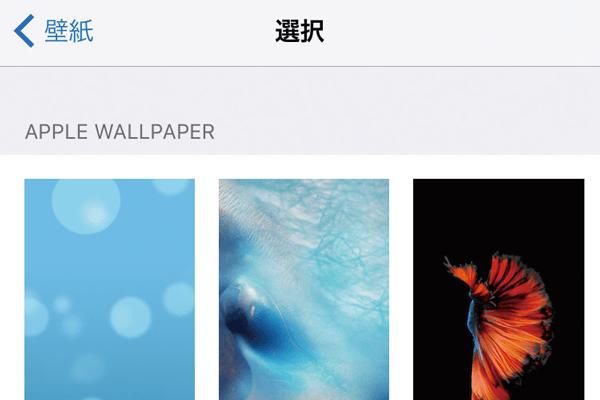 iPhoneの壁紙(ホーム画面/ロック画面)を変更する方法