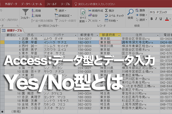 AccessのテーブルでのYes/No型の使い方