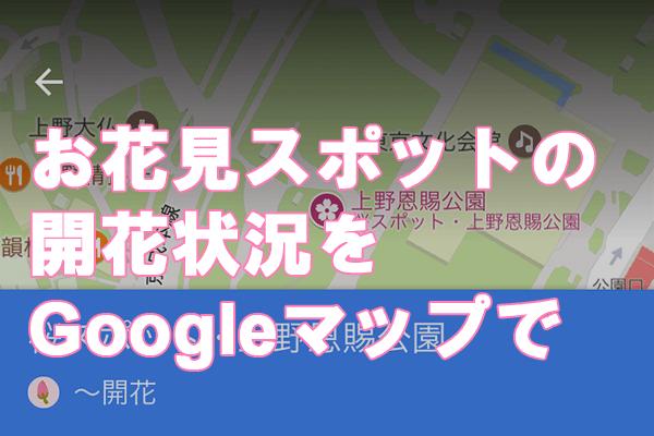 iPhoneアプリで開花状況もわかる! 「Googleマップ」お花見情報の使い方