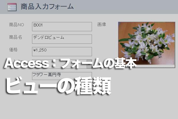 Accessのフォームに用意されているビューの種類