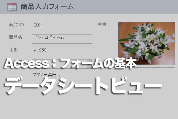 Accessのフォームでデータシートビューを利用する方法