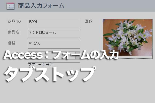 Accessのフォームでデータ入力しない場所にカーソルが移動しないようにする方法