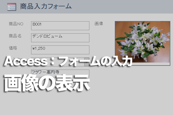 Accessのフォームで画像を枠内に表示するには