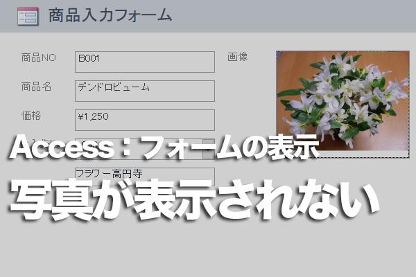 Accessのフォームに写真を表示する方法