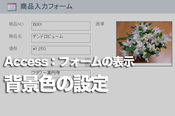 Accessのフォームの1行おきの色を解除する方法