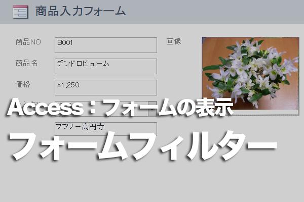 Accessのフォームの画面に条件を入力する方法
