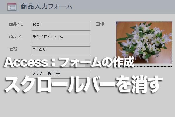 Accessのフォームのテキストボックスでスクロールバーを非表示にする方法