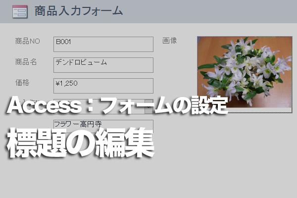 Accessのフォームでタブやタイトルバーに表示される文字列を変更する方法