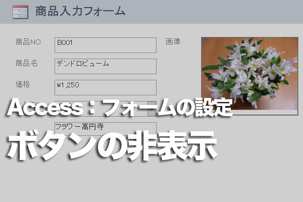 Accessのフォームで[最小化][最大化][閉じる]ボタンを非表示にする方法