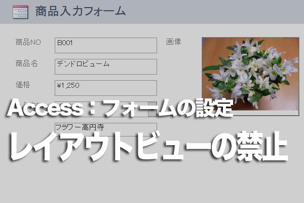 Accessの特定のフォームでレイアウトビューを非表示にする方法