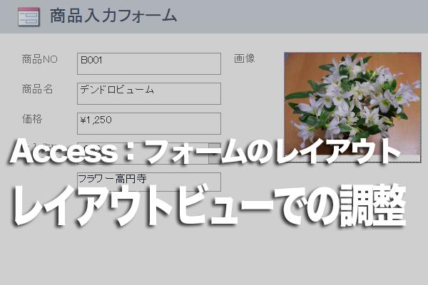Accessのフォームのレイアウトビューでコントロールのサイズを変更する方法