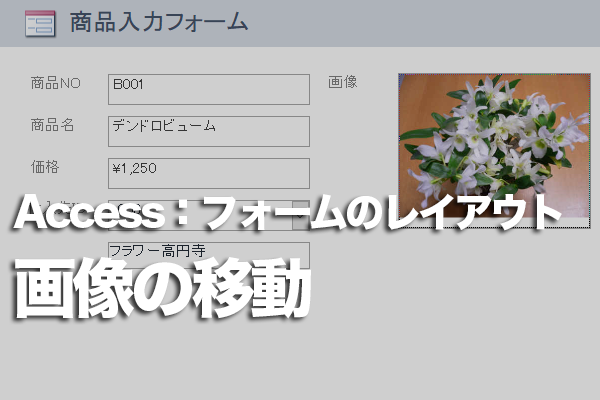 Accessのフォームで、集合形式のレイアウトから画像のコントロールだけ横に移動する方法