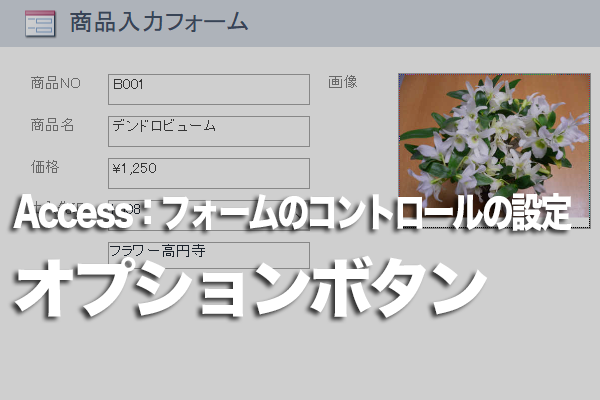 Accessのフォームでオプションボタンを使ってデータを入力する方法