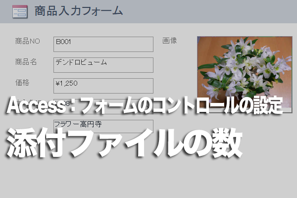 Accessのフォームの添付ファイル型フィールドのデータ数をひと目で知る方法