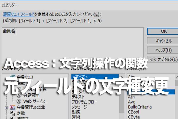 Accessの関数で元のフィールドの文字種を変換する方法