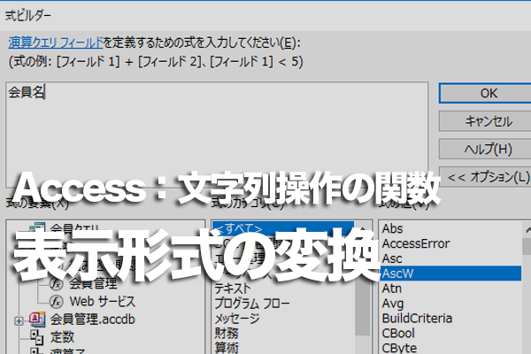 Accessの「Format」関数でデータの表示形式を変換する方法