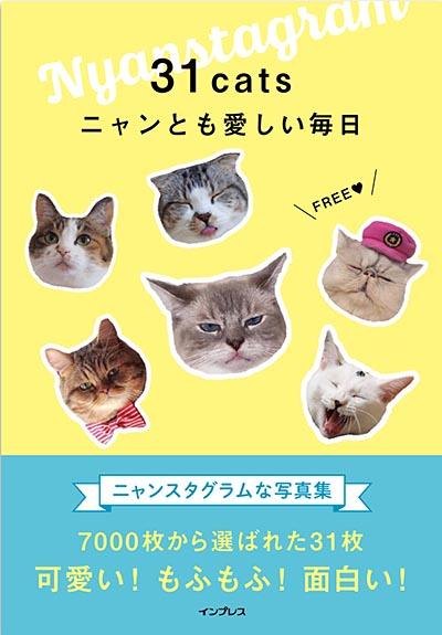 31cats ニャンとも愛しい毎日