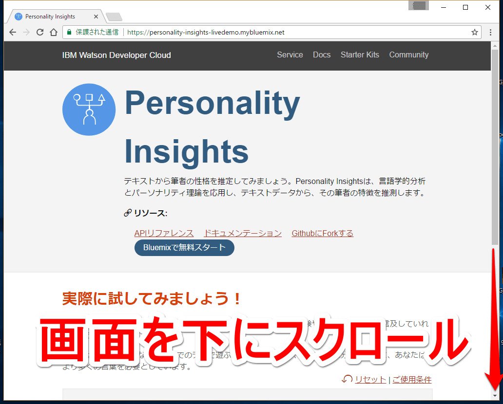 IBM Watson Developer Cloudの「Personal Insights」のWebページ画面その1