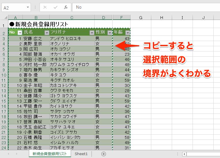 【エクセル時短】見えているセルだけコピペしたい! 毎回削除するのが面倒な非表示の行と列を除いて選択する方法