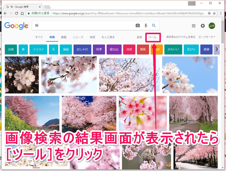 Google(グーグル)の画像検索結果画面