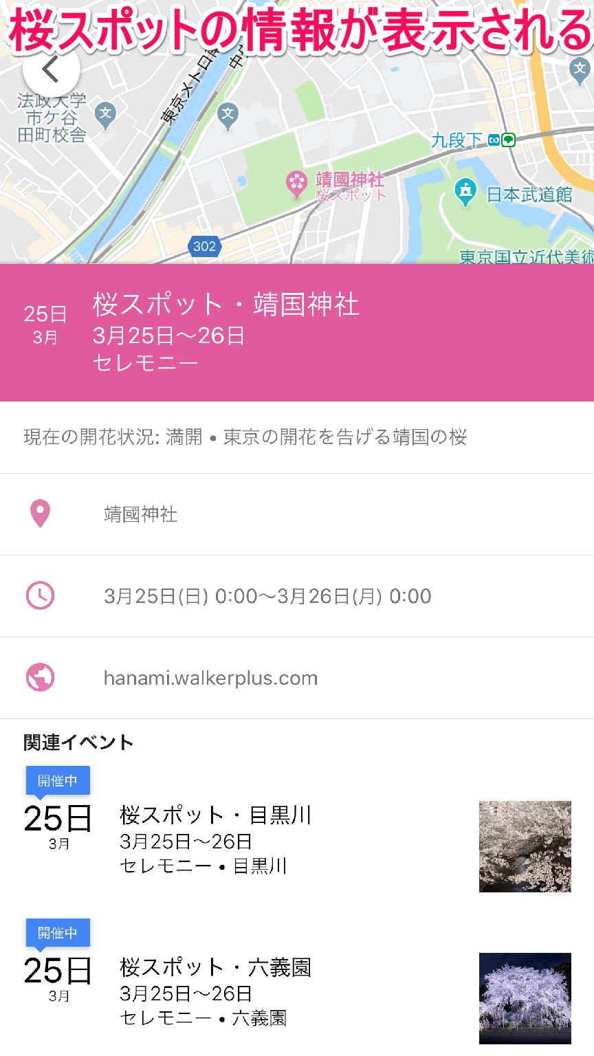 グーグルマップ(Google地図)の桜スポット情報画面