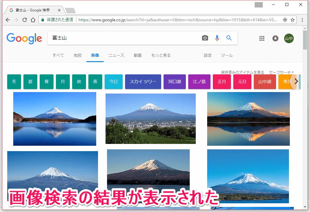 グーグル(Google)画像検索を音声で行ったときの検索結果画面