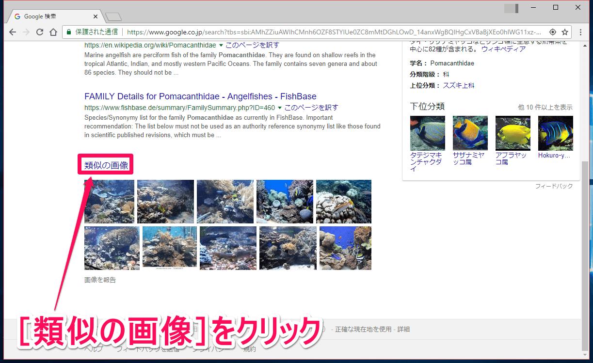 Google(グーグル)画像検索の検索結果画面で「類似の画像」をクリックする画面