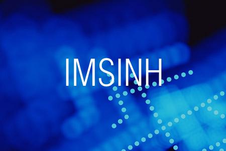 IMSINH関数で複素数の双曲線正弦を求める