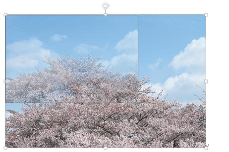 Wordで縦横比を変えずに写真のサイズを変更する方法
