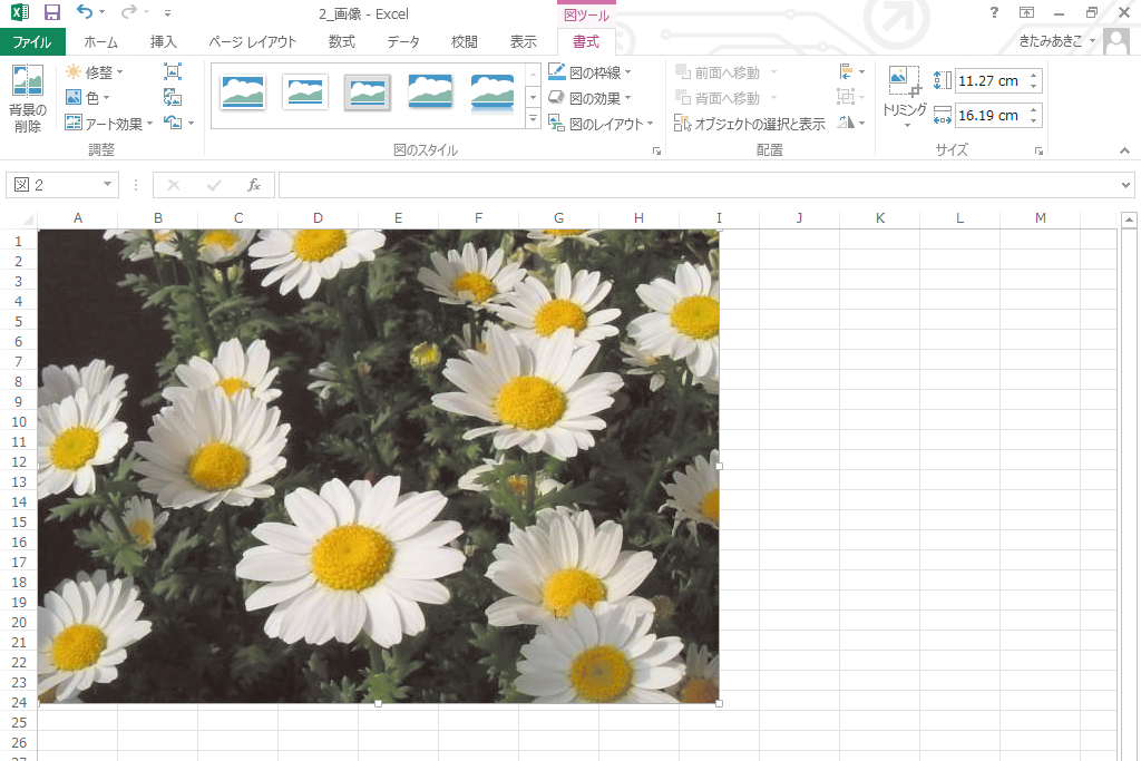 Excelのワークシートに画像を挿入する方法