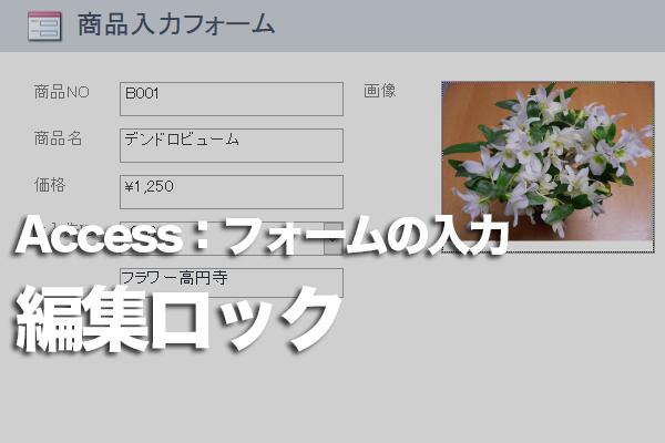 Accessのフォームで特定のフィールドのデータを変更できなくする方法