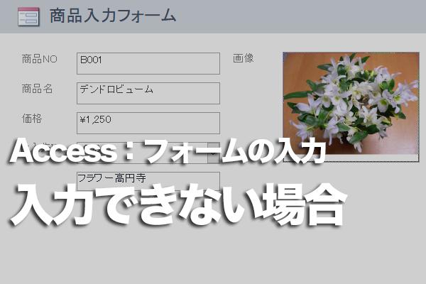 Accessのフォームのテキストボックスにデータを入力できない場合の対処方法