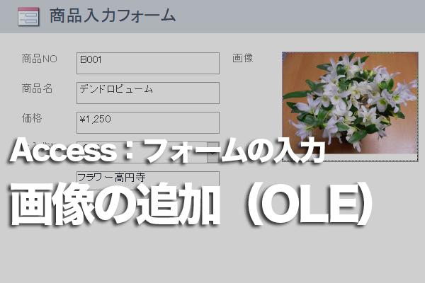 AccessのフォームでOLEオブジェクト型のフィールドに画像を追加する方法