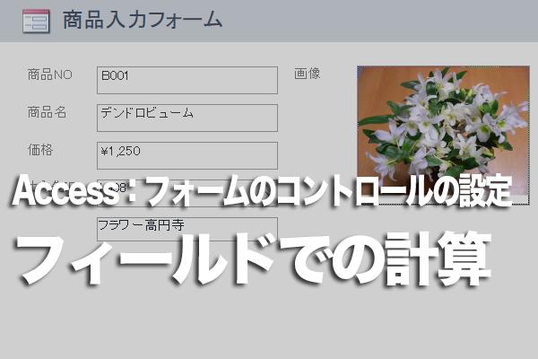 Accessのフォームでフィールドの値を使った演算結果をテキストボックスに表示する方法